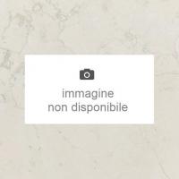BIANCO PERLINO 1^scelta marmette patinate e bisellate Formato: cm. 60x40x2 Quantità: mq.11,76 Prezzo: Euro 25,00/mq